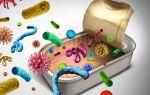 Пищевые отравления: участвуют ли в них бактерии