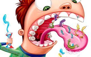 Бактерии, обитающие во рту: как создать безопасное равновесие