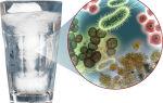 Что делать, если выявлены бактерии в воде
