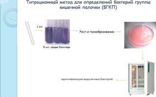 Определение бактерий группы кишечной палочки (бгкп) методом смывов