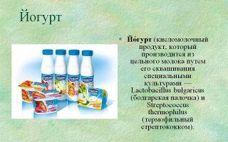 Какова роль бактерий для йогурта и как приготовить этот продукт дома?