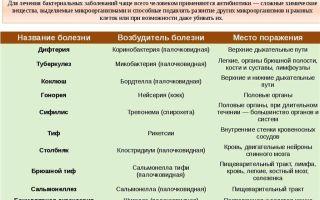 Признаки и виды бактериальной инфекции – диагностика и лечение заболеваний