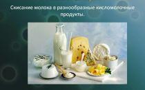 Польза и вред молочнокислых бактерий