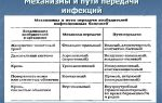 Разновидности, механизм воздействия и принципы лечения вирусных инфекций