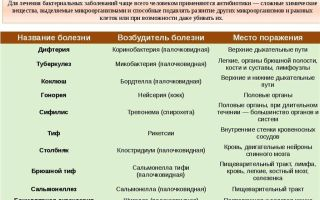 Бактерии как причина инфекционных заболеваний человека
