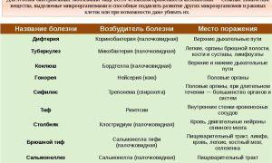 Цитробактер: описание бактерий, симптомы и лечение заболеваний