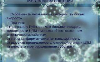 Метаболизм, или за счет чего живут бактерии