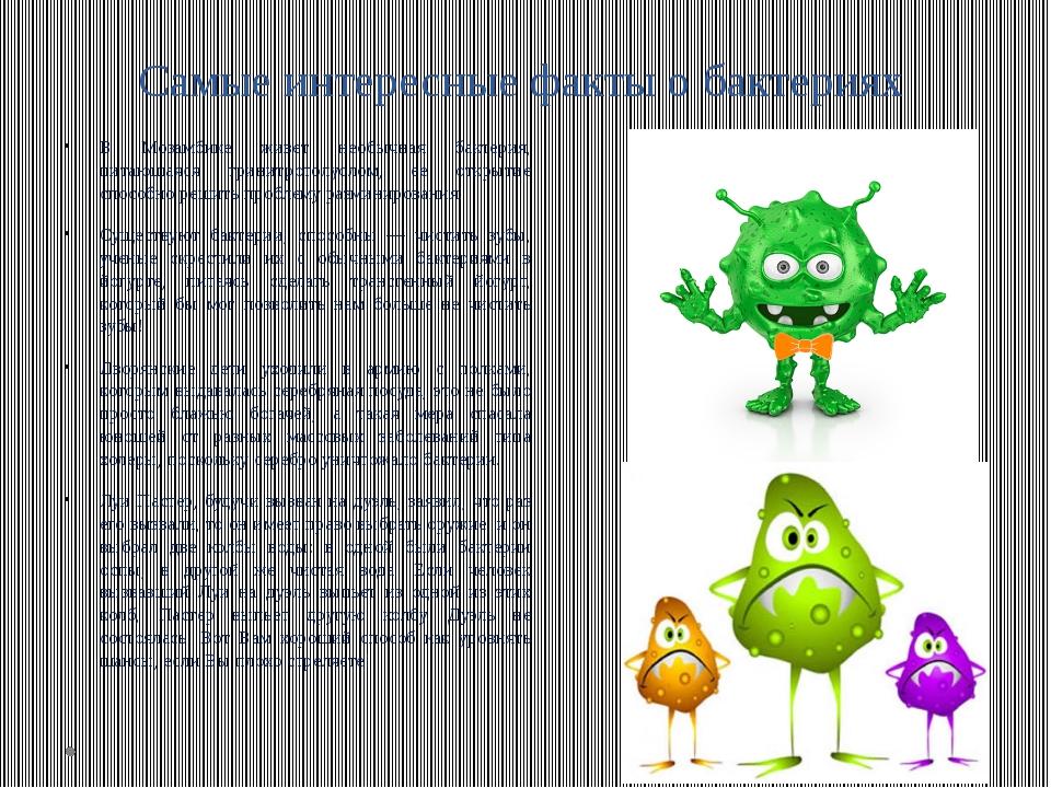 социальных интересные факты про биологию с фото этого форма березы