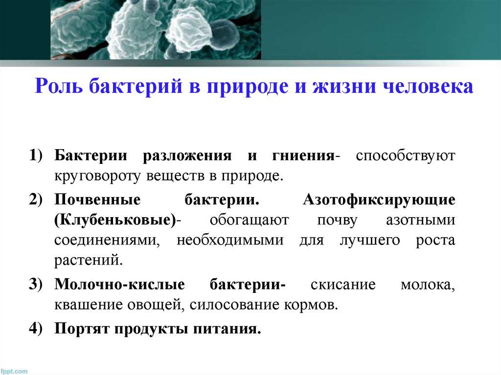 Положительное влияние бактерий
