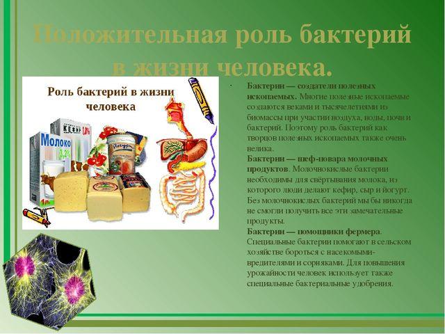 Микроорганизмы в жизни человека