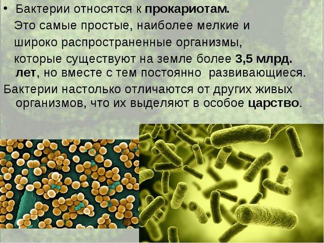 Чем опасны болезнетворные бактерии и какие заболевания они вызывают